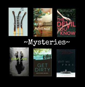 Mystery Covers