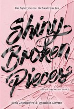 Shiny_Broken_Pieces